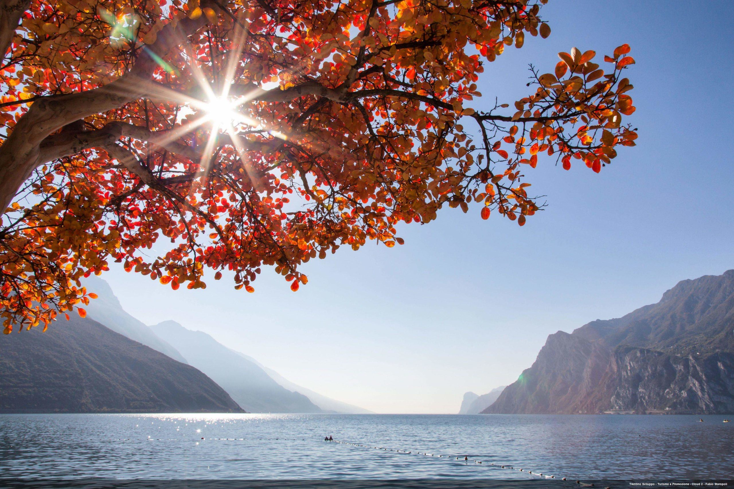 Autumn Walks: Best Spots For Leaf Peeping In Trentino, Italy